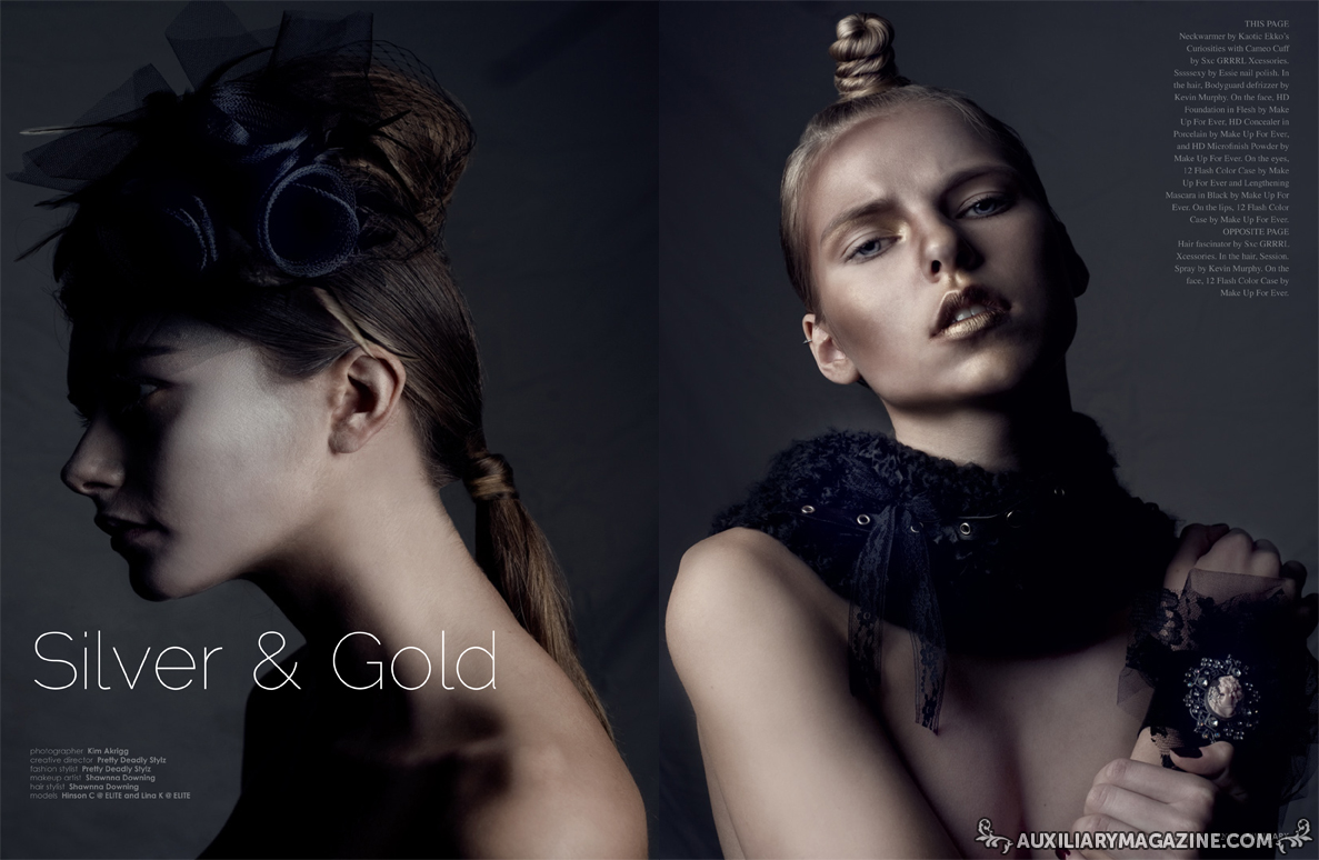 Beauty Editorial Silver